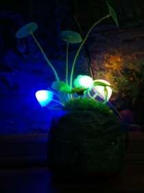 Оригинальный светильник Аватар-Грибы, в Челябинске