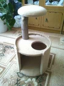 кошкин дом, в Набережных Челнах