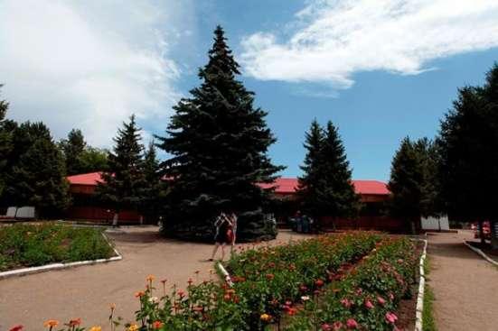Пансионат лагерь Иссык Куль, отдых развлечения