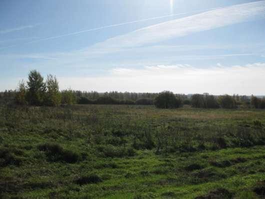 Продам участок 4.5 га, земли сельхозназначения (СНТ, ДНП) в Кстове Фото 2