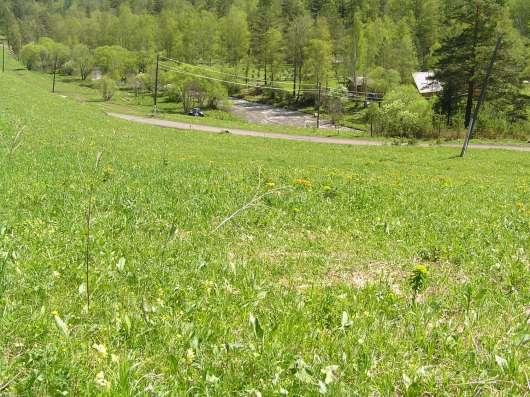 Купить земельный участок в Чемальском районе 6,5 Га в Горно-Алтайске Фото 1