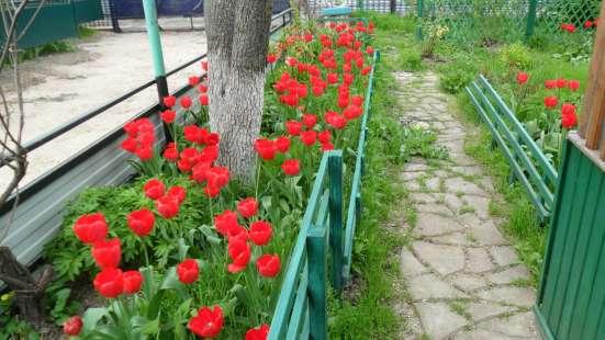 ЖИТЬ НА МОРЕ В ЖИТНИЦЕ РОССИИ