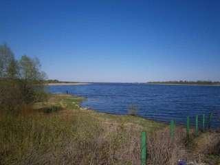 Продам 300 соток земли сельхозназначения в Великом Новгороде Фото 2
