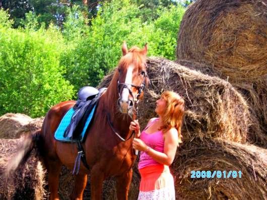 Приглашаем на экскурсию в контактактный зоопарк и конюшню