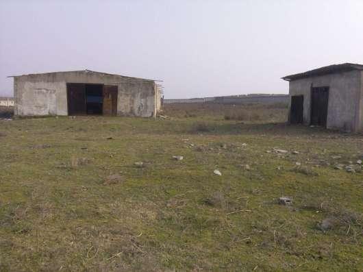 Продается Ферма для жвотноводства в г. Ташкент Фото 3