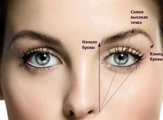 Обучение мастеров бровистов