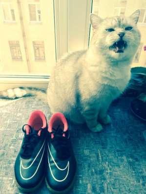 Бутсы новые (кроссовки)