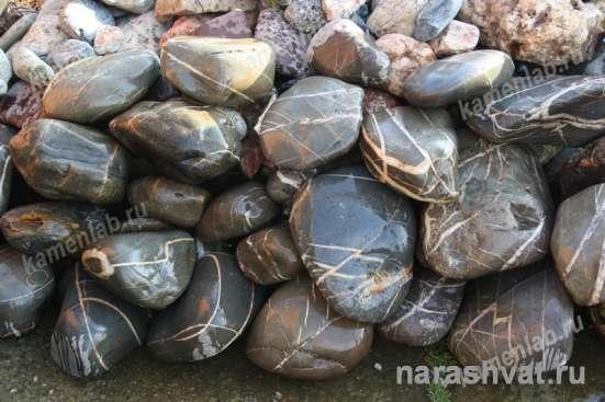 Природный камень для ландшафта. Корни дерева в Краснодаре Фото 5