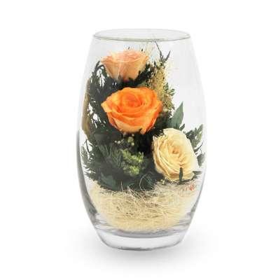 Розы оранжевые натуральные в вакууме