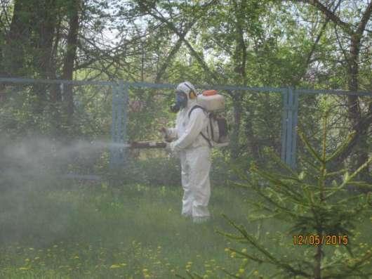 Санобработка от насекомых, грызунов, дезинфекция в Тольятти Фото 5