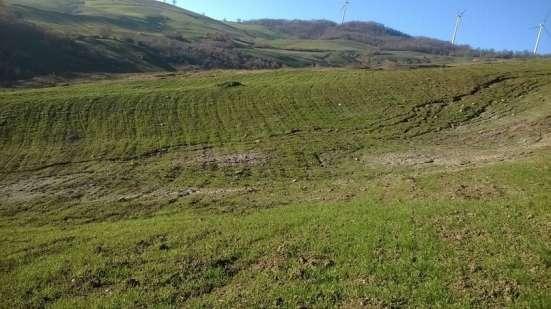 Продам срочно свой тройной участок земли в 9,5 гектар в г. Molise Фото 6