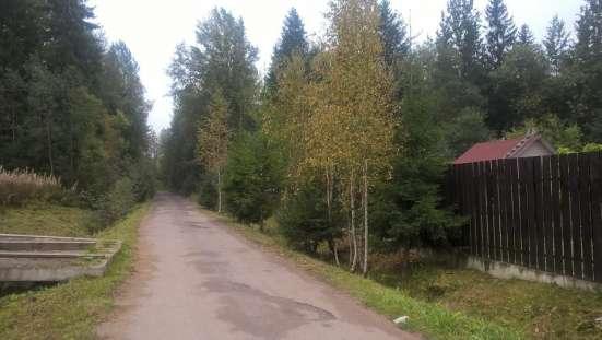Ногинский район д. Большое Буньково, участок 10 соток Фото 5