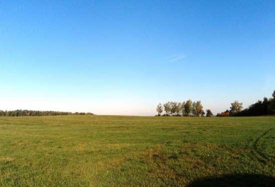 Участок 6Га, д. Ерышово, Можайский р-н. Фото 1