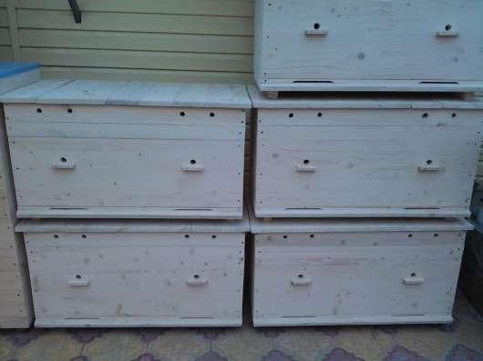 Пчелиные ульи от производителя в г. Нальчик Фото 1