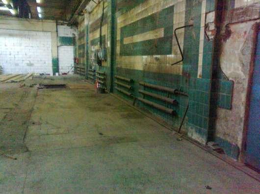 Сдам помещение под склад, производство, 1600 кв.м,м.Черная р в Санкт-Петербурге Фото 2