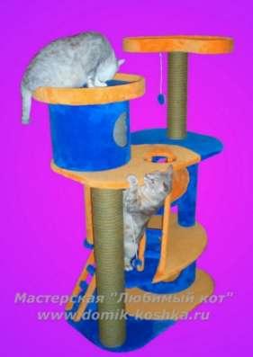 Домики для кошек в Новосибирске Фото 4