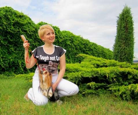 Шикарный йоркширский Донжуан поухаживает за дамой в г. Днепропетровск Фото 1