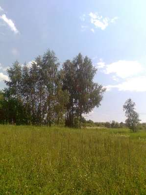 Продаю участок для дачи (ЛПХ) в д. Л. Ящерово, 75км от МКАД в Серпухове Фото 3